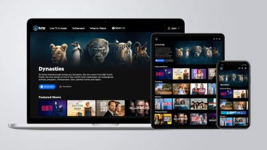 Watch TVNZ Outside New Zealand with a VPN, Smart DNS